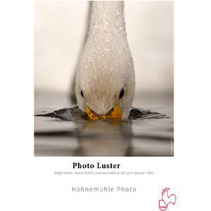 Photo Luster 290 g